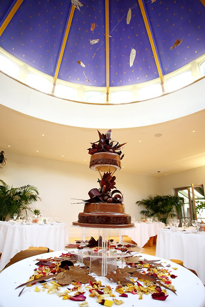 A£595 3 tier Autumn Leaves Chocolate Weddign Cake 3