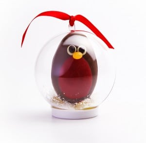 Chocolate Robin Snowglobe